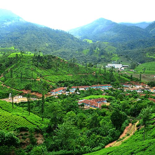Coimbatore - Munnar - Thekkady - Coimbatore